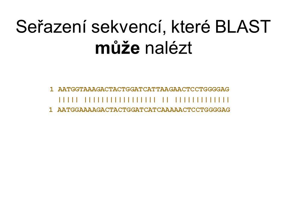 Seřazení sekvencí, které BLAST může nalézt 1 AATGGTAAAGACTACTGGATCATTAAGAACTCCTGGGGAG ||||| ||||||||||||||||| || ||||||||||||| 1 AATGGAAAAGACTACTGGATC
