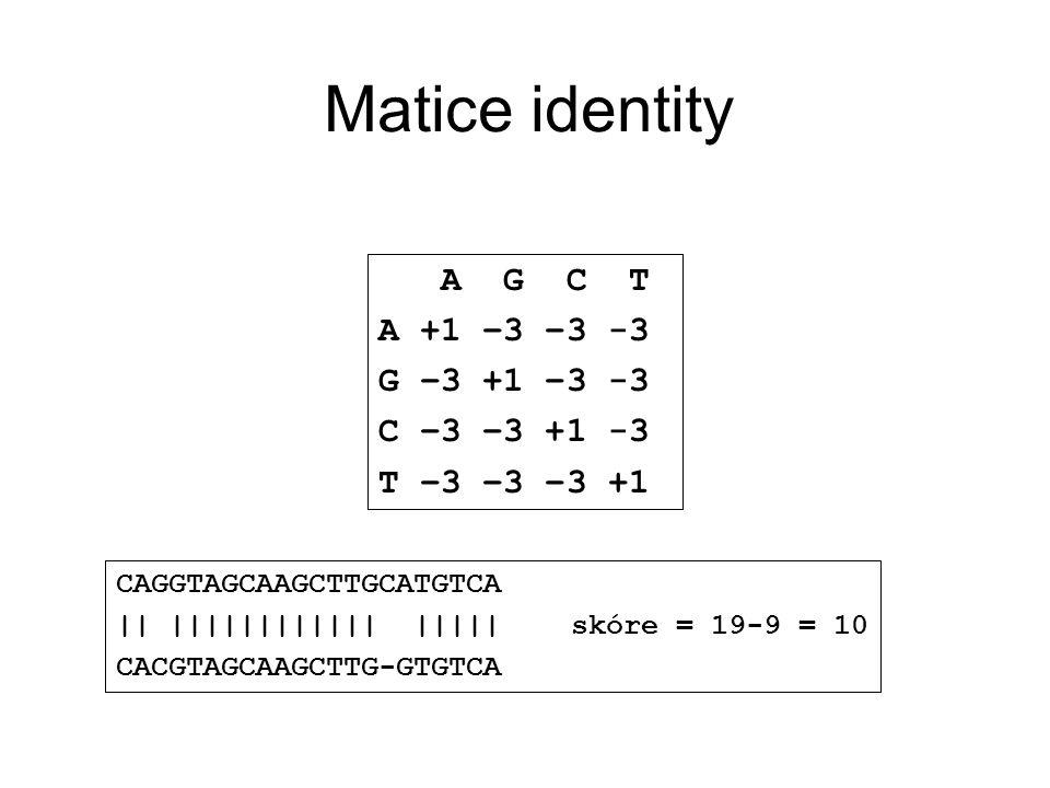 Matice identity A G C T A +1 0 0 0 G 0 +1 0 0 C 0 0 +1 0 T 0 0 0 +1 CAGGTAGCAAGCTTGCATGTCA || |||||||||||| ||||| raw score = 19 CACGTAGCAAGCTTG-GTGTCA