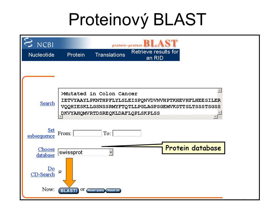 Proteinový BLAST >Mutated in Colon Cancer IETVYAAYLPKNTHPFLYLSLEISPQNVDVNVHPTKHEVHFLHEESILER VQQHIESKLLGSNSSRMYFTQTLLPGLAGPSGEMVKSTTSLTSSSTSGSS DKVYAH
