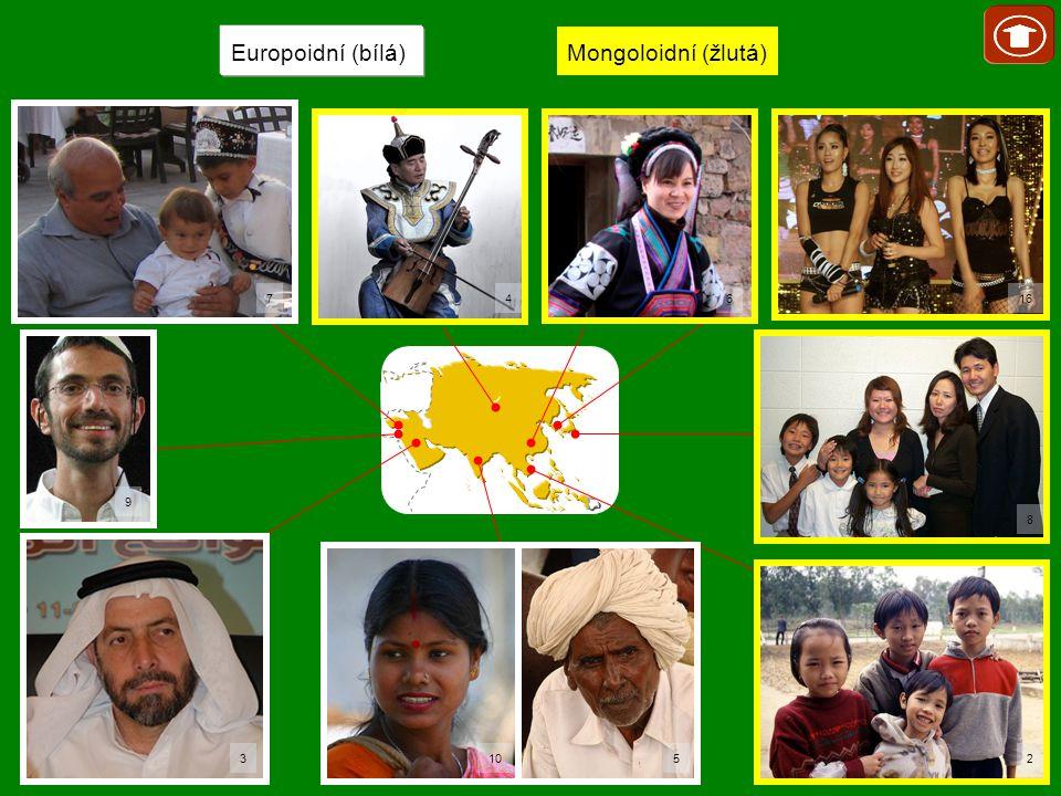 Europoidní (bílá) Mongoloidní (žlutá) 7 10 16 52 8 64 9 3