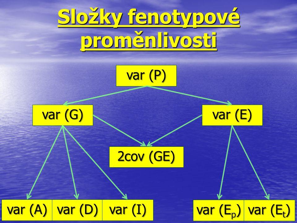 Složky fenotypové proměnlivosti var (P) var (G) var (E) 2cov (GE) var (A) var (D) var (I) var (E p ) var (E t )