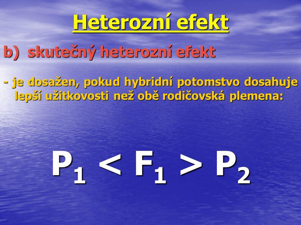 Heterozní efekt - je dosažen, pokud hybridní potomstvo dosahuje lepší užitkovosti než obě rodičovská plemena: P 1 P 2 b)skutečný heterozní efekt