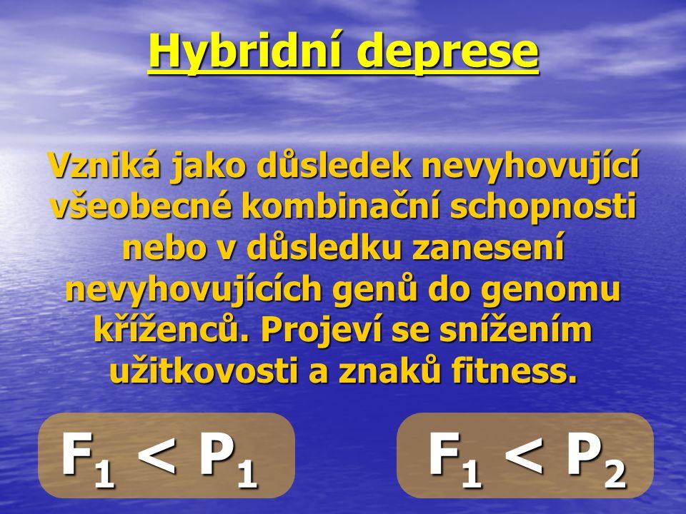 Hybridní deprese Vzniká jako důsledek nevyhovující všeobecné kombinační schopnosti nebo v důsledku zanesení nevyhovujících genů do genomu kříženců. Pr