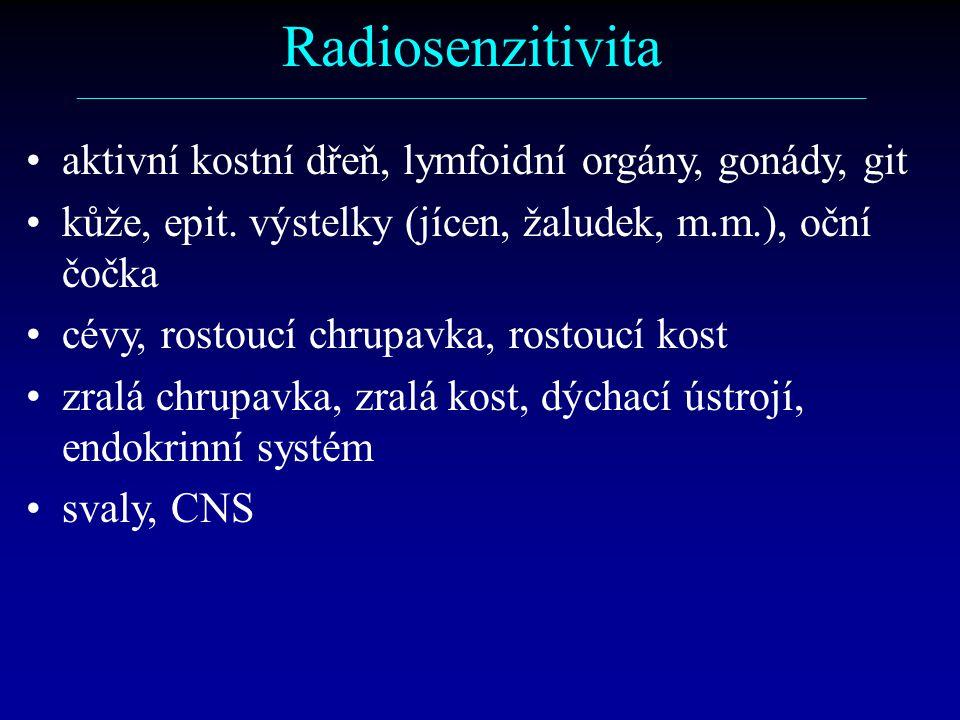 Radiosenzitivita ––––––––––––––––––––––––––––––––––––––––––––––––––––––––––– aktivní kostní dřeň, lymfoidní orgány, gonády, git kůže, epit.