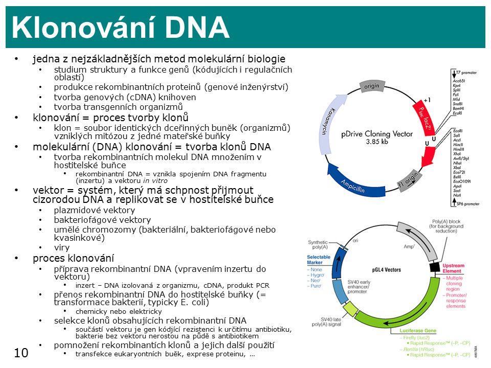10 Klonování DNA jedna z nejzákladnějších metod molekulární biologie studium struktury a funkce genů (kódujících i regulačních oblastí) produkce rekombinantních proteinů (genové inženýrství) tvorba genových (cDNA) knihoven tvorba transgenních organizmů klonování = proces tvorby klonů klon = soubor identických dceřinných buněk (organizmů) vzniklých mitózou z jedné mateřské buňky molekulární (DNA) klonování = tvorba klonů DNA tvorba rekombinantních molekul DNA množením v hostitelské buňce rekombinantní DNA = vznikla spojením DNA fragmentu (inzertu) a vektoru in vitro vektor = systém, který má schpnost přijmout cizorodou DNA a replikovat se v hostitelské buňce plazmidové vektory bakteriofágové vektory umělé chromozomy (bakteriální, bakteriofágové nebo kvasinkové) viry proces klonování příprava rekombinantní DNA (vpravením inzertu do vektoru) inzert – DNA izolovaná z organizmu, cDNA, produkt PCR přenos rekombinantní DNA do hostitelské buňky (= transformace bakterií, typicky E.