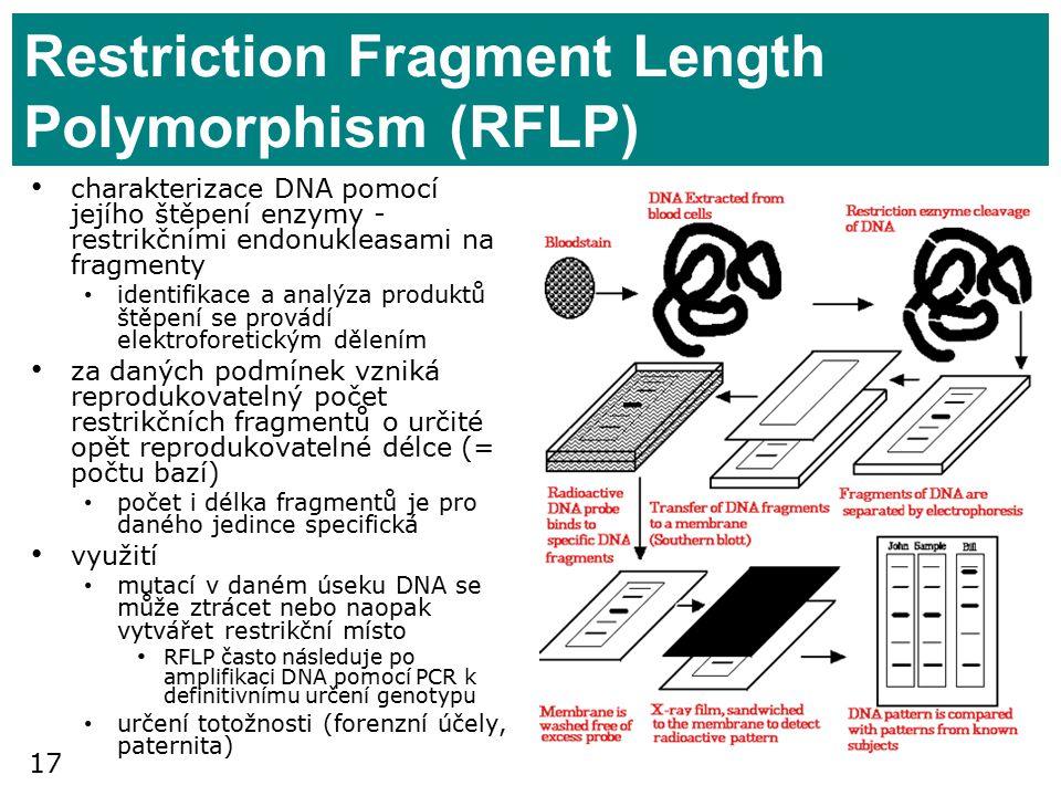 17 Restriction Fragment Length Polymorphism (RFLP) charakterizace DNA pomocí jejího štěpení enzymy - restrikčními endonukleasami na fragmenty identifikace a analýza produktů štěpení se provádí elektroforetickým dělením za daných podmínek vzniká reprodukovatelný počet restrikčních fragmentů o určité opět reprodukovatelné délce (= počtu bazí) počet i délka fragmentů je pro daného jedince specifická využití mutací v daném úseku DNA se může ztrácet nebo naopak vytvářet restrikční místo RFLP často následuje po amplifikaci DNA pomocí PCR k definitivnímu určení genotypu určení totožnosti (forenzní účely, paternita)