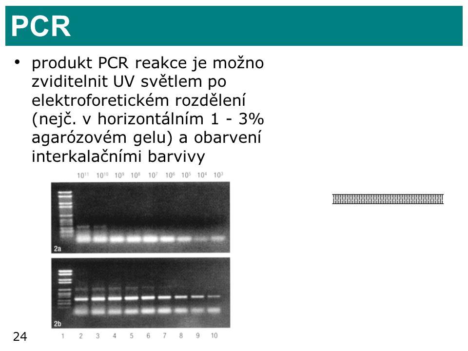 24 PCR produkt PCR reakce je možno zviditelnit UV světlem po elektroforetickém rozdělení (nejč.