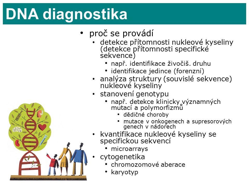 27 DNA diagnostika proč se provádí detekce přítomnosti nukleové kyseliny (detekce přítomnosti specifické sekvence) např.