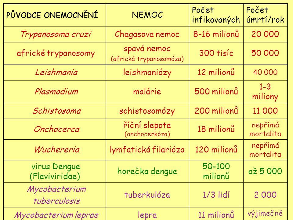 PŮVODCE ONEMOCNĚNÍ NEMOC Počet infikovaných Počet úmrtí/rok Trypanosoma cruziChagasova nemoc8-16 milionů20 000 africké trypanosomy spavá nemoc (africká trypanosomóza) 300 tisíc50 000 Leishmanialeishmaniózy12 milionů 40 000 Plasmodiummalárie500 milionů 1-3 miliony Schistosomaschistosomózy200 milionů11 000 Onchocerca říční slepota (onchocerkóza) 18 milionů nepřímá mortalita Wuchererialymfatická filarióza120 milionů nepřímá mortalita virus Dengue (Flaviviridae) horečka dengue 50-100 milionů až 5 000 Mycobacterium tuberculosis tuberkulóza1/3 lidí2 000 Mycobacterium lepraelepra11 milionů výjimečně