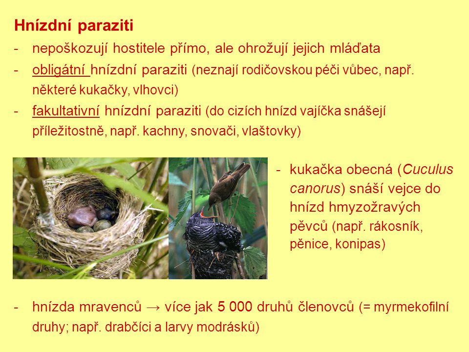 Hnízdní paraziti -nepoškozují hostitele přímo, ale ohrožují jejich mláďata -obligátní hnízdní paraziti (neznají rodičovskou péči vůbec, např.