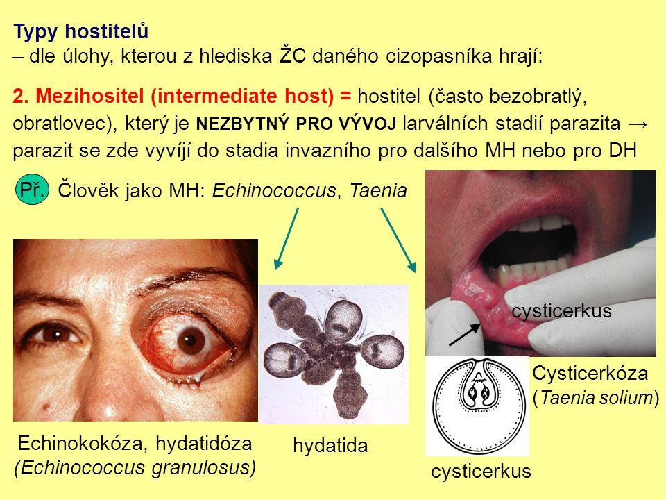 Typy hostitelů – dle úlohy, kterou z hlediska ŽC daného cizopasníka hrají: 2.