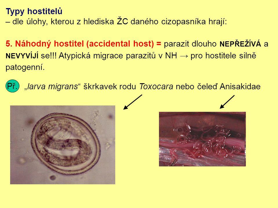 Typy hostitelů – dle úlohy, kterou z hlediska ŽC daného cizopasníka hrají: 5.