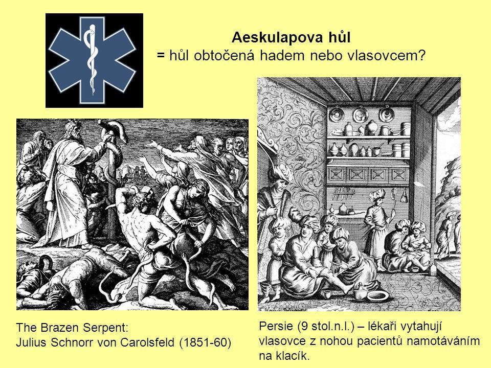 Persie (9 stol.n.l.) – lékaři vytahují vlasovce z nohou pacientů namotáváním na klacík.