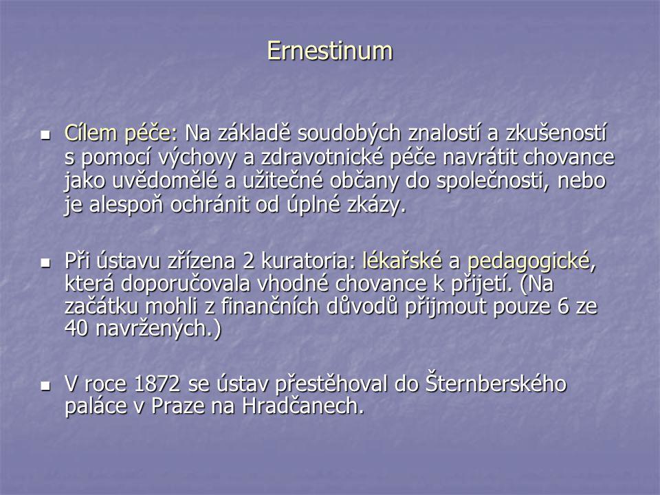 Ernestinum Cílem péče: Na základě soudobých znalostí a zkušeností s pomocí výchovy a zdravotnické péče navrátit chovance jako uvědomělé a užitečné obč