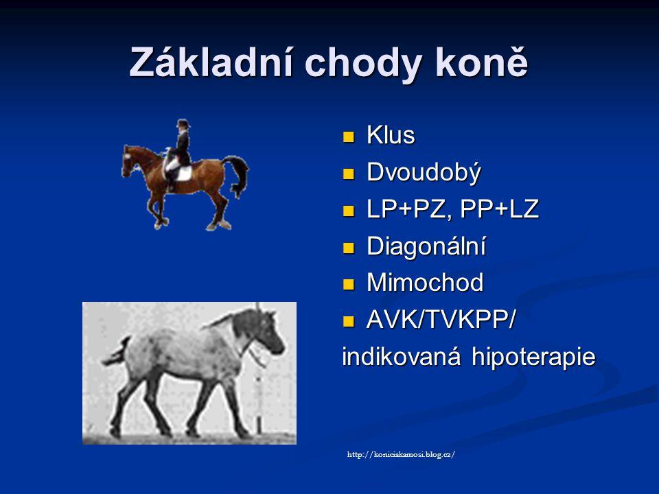Základní chody koně Klus Dvoudobý LP+PZ, PP+LZ Diagonální Mimochod AVK/TVKPP/ indikovaná hipoterapie http://koniciakamosi.blog.cz/