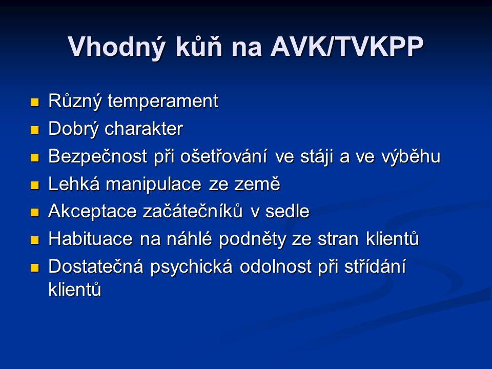 Vhodný kůň na AVK/TVKPP Různý temperament Různý temperament Dobrý charakter Dobrý charakter Bezpečnost při ošetřování ve stáji a ve výběhu Bezpečnost
