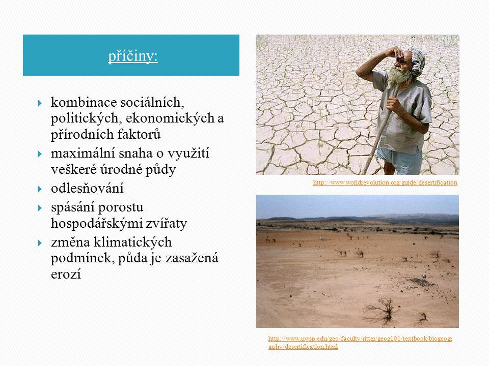 příčiny:  kombinace sociálních, politických, ekonomických a přírodních faktorů  maximální snaha o využití veškeré úrodné půdy  odlesňování  spásán
