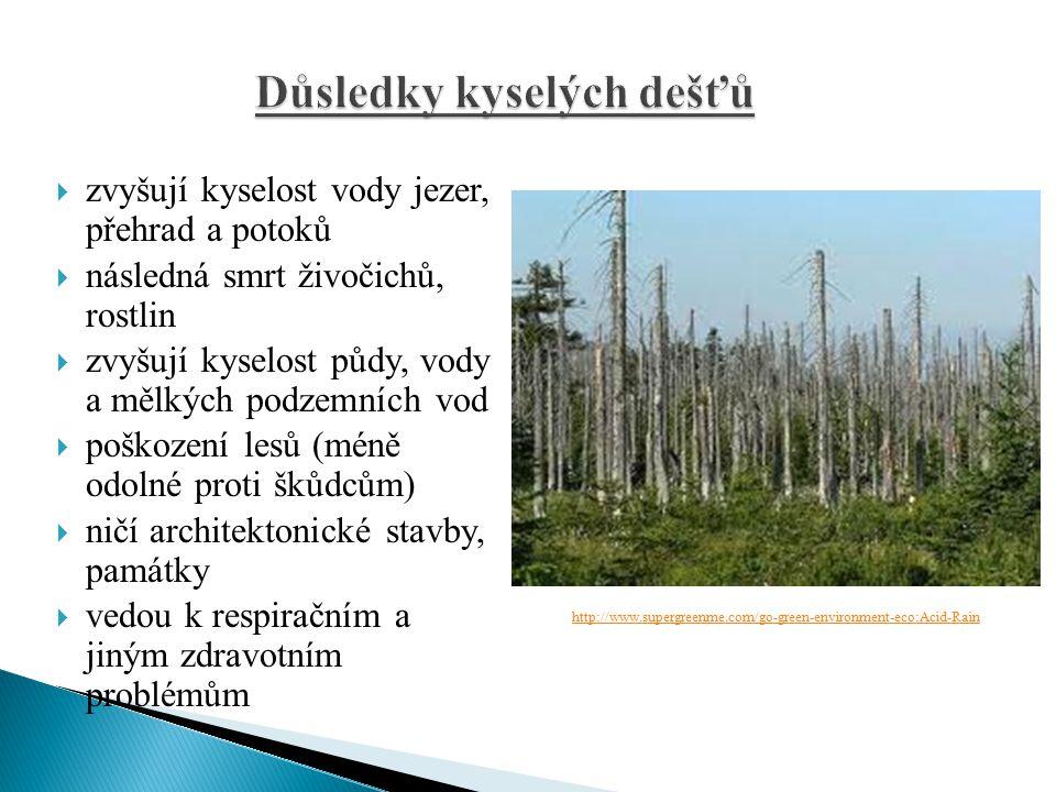  zvyšují kyselost vody jezer, přehrad a potoků  následná smrt živočichů, rostlin  zvyšují kyselost půdy, vody a mělkých podzemních vod  poškození