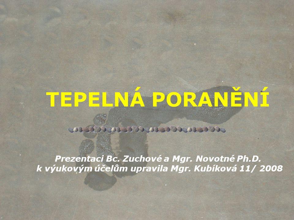 TEPELNÁ PORANĚNÍ Prezentaci Bc.Zuchové a Mgr. Novotné Ph.D.