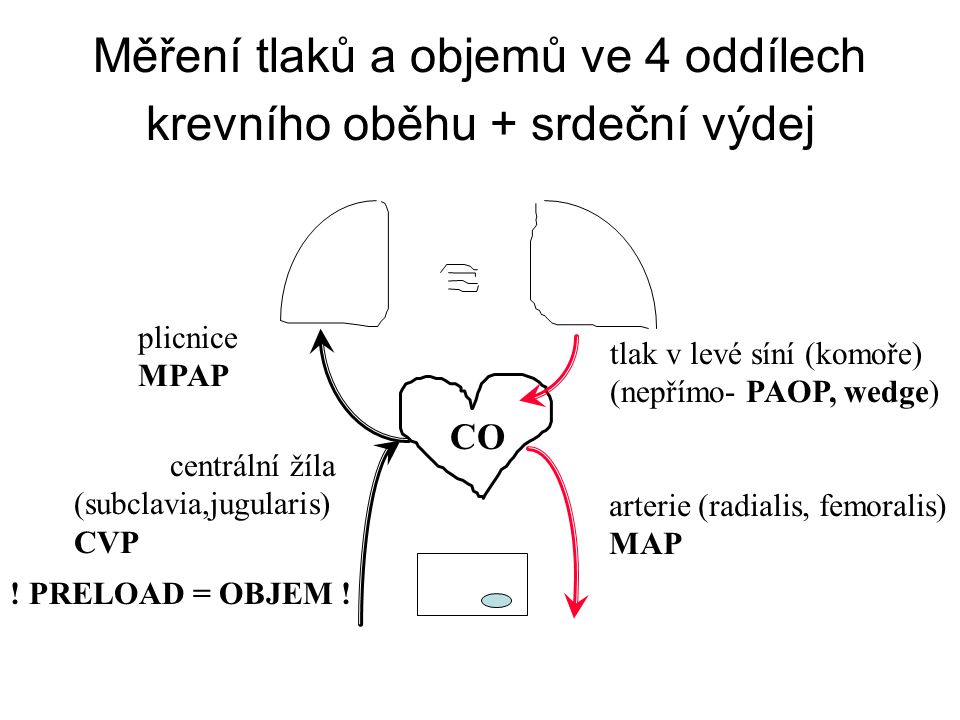 Měření tlaků a objemů ve 4 oddílech krevního oběhu + srdeční výdej arterie (radialis, femoralis) MAP centrální žíla (subclavia,jugularis) CVP plicnice MPAP tlak v levé síní (komoře) (nepřímo- PAOP, wedge) CO .