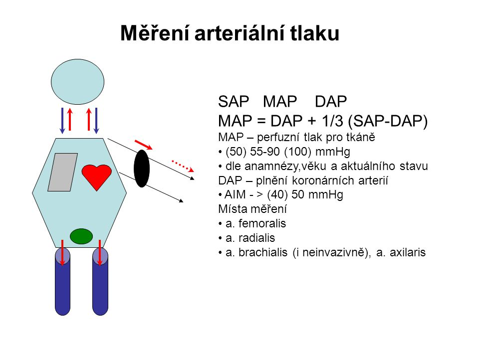 Měření arteriální tlaku SAP MAP DAP MAP = DAP + 1/3 (SAP-DAP) MAP – perfuzní tlak pro tkáně (50) 55-90 (100) mmHg dle anamnézy,věku a aktuálního stavu DAP – plnění koronárních arterií AIM - > (40) 50 mmHg Místa měření a.