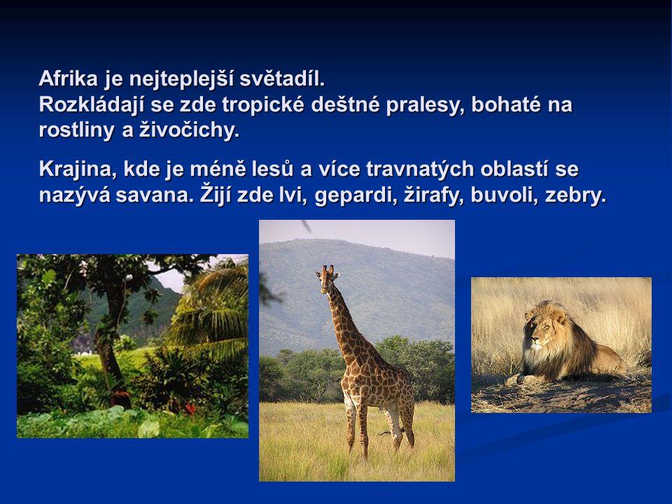 Afrika je nejteplejší světadíl. Rozkládají se zde tropické deštné pralesy, bohaté na rostliny a živočichy. Krajina, kde je méně lesů a více travnatých