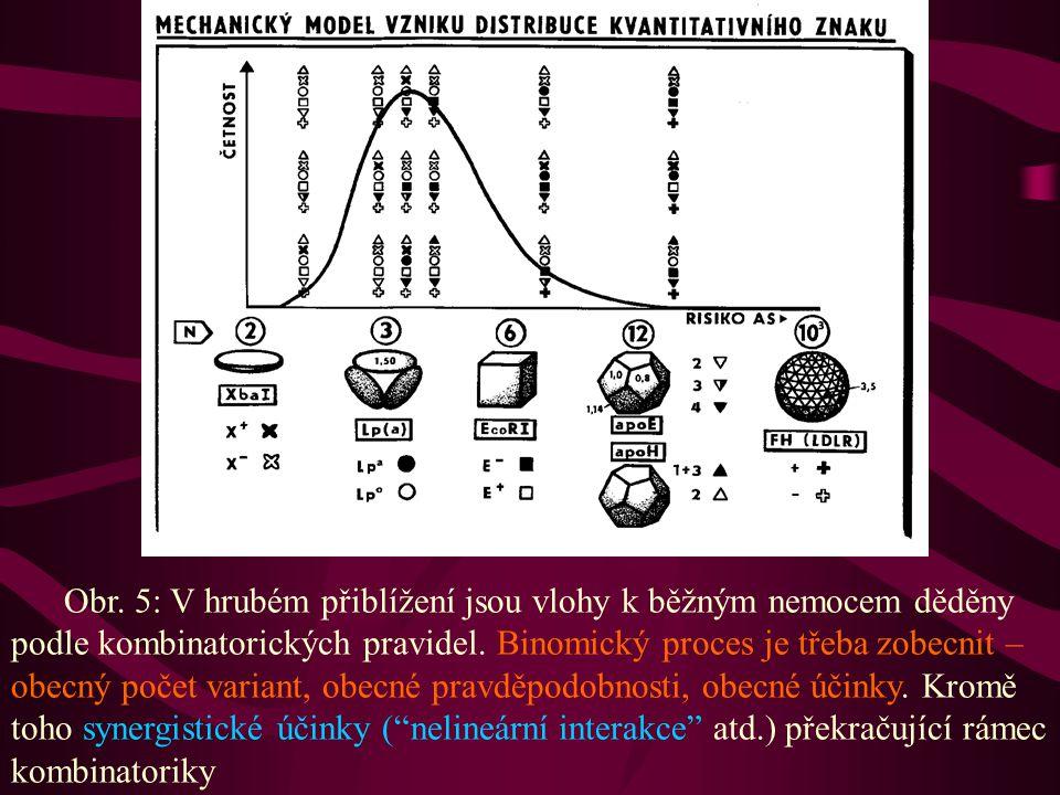 Obr. 5: V hrubém přiblížení jsou vlohy k běžným nemocem děděny podle kombinatorických pravidel. Binomický proces je třeba zobecnit – obecný počet vari
