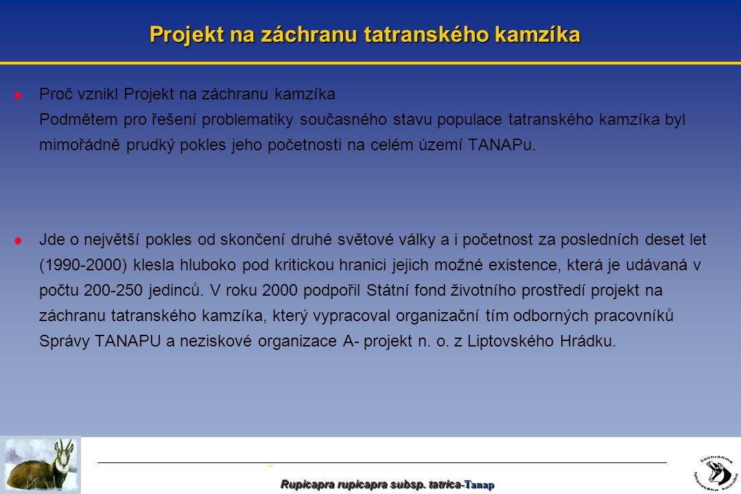 - Projekt na záchranu tatranského kamzíka l Proč vznikl Projekt na záchranu kamzíka Podmětem pro řešení problematiky současného stavu populace tatranského kamzíka byl mimořádně prudký pokles jeho početnosti na celém území TANAPu.
