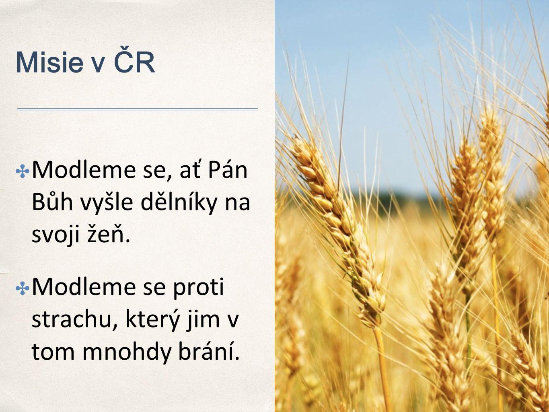 Misie v ČR ✤ Modleme se, ať Pán Bůh vyšle dělníky na svoji žeň.