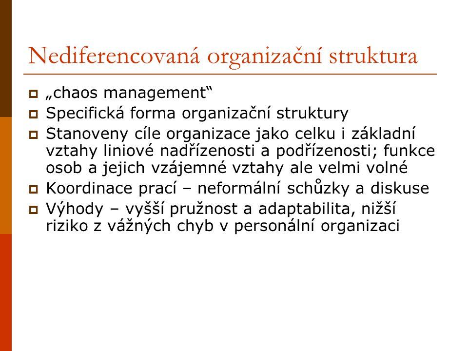 """Nediferencovaná organizační struktura  """"chaos management  Specifická forma organizační struktury  Stanoveny cíle organizace jako celku i základní vztahy liniové nadřízenosti a podřízenosti; funkce osob a jejich vzájemné vztahy ale velmi volné  Koordinace prací – neformální schůzky a diskuse  Výhody – vyšší pružnost a adaptabilita, nižší riziko z vážných chyb v personální organizaci"""