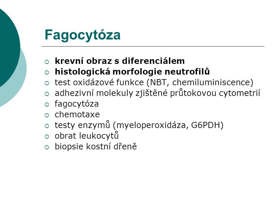 Fagocytóza  krevní obraz s diferenciálem  histologická morfologie neutrofilů  test oxidázové funkce (NBT, chemiluminiscence)  adhezivní molekuly z
