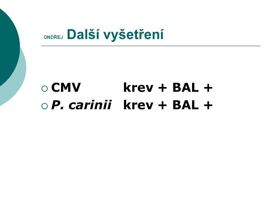 ONDŘEJ Další vyšetření  CMV krev + BAL +  P. carinii krev + BAL +