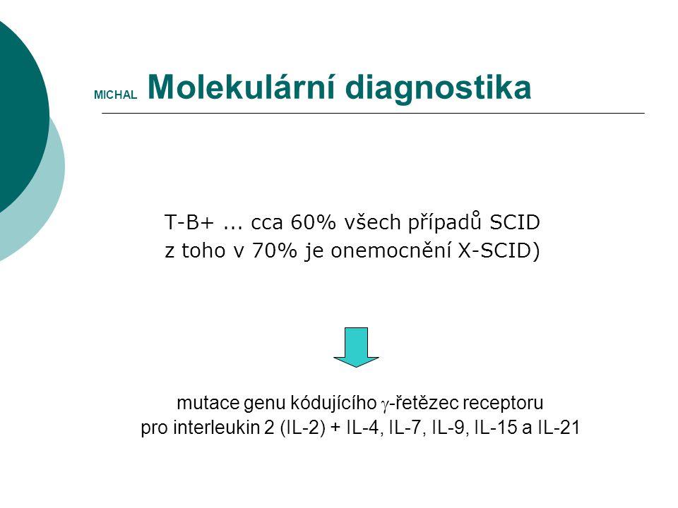 MICHAL Molekulární diagnostika T-B+... cca 60% všech případů SCID z toho v 70% je onemocnění X-SCID) mutace genu kódujícího  -řetězec receptoru pro i