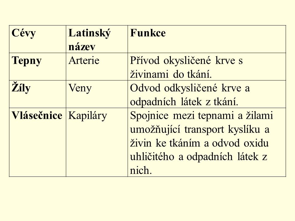 CévyLatinský název Funkce TepnyArteriePřívod okysličené krve s živinami do tkání. ŽílyVenyOdvod odkysličené krve a odpadních látek z tkání. Vlásečnice
