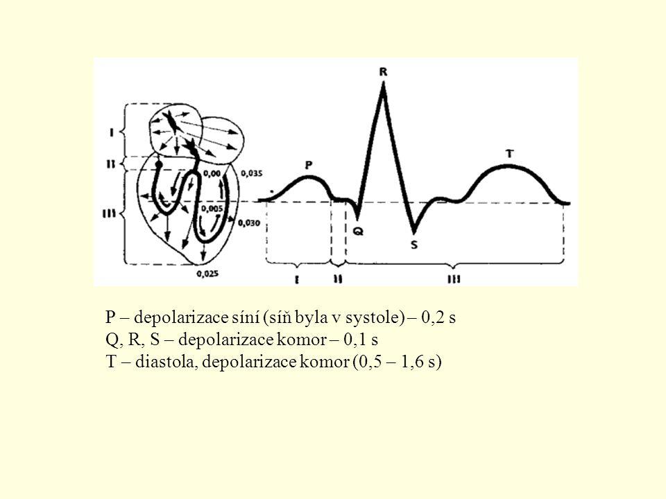 P – depolarizace síní (síň byla v systole) – 0,2 s Q, R, S – depolarizace komor – 0,1 s T – diastola, depolarizace komor (0,5 – 1,6 s)