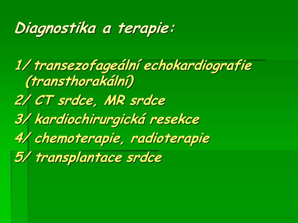 Diagnostika a terapie: 1/ transezofageální echokardiografie (transthorakální) 2/ CT srdce, MR srdce 3/ kardiochirurgická resekce 4/ chemoterapie, radi