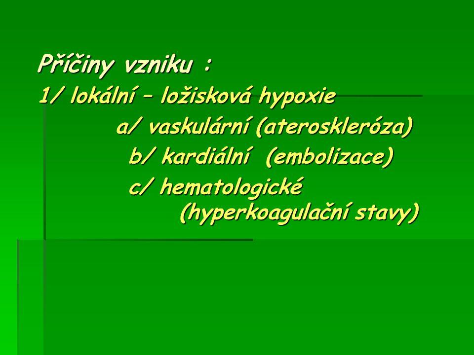 Příčiny vzniku : 1/ lokální – ložisková hypoxie a/ vaskulární (ateroskleróza) a/ vaskulární (ateroskleróza) b/ kardiální (embolizace) b/ kardiální (em