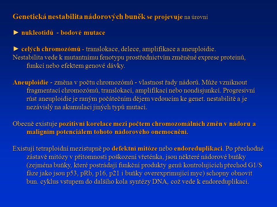 Genetická nestabilita nádorových buněk se projevuje na úrovni ► nukleotidů - bodové mutace ► celých chromozómů - translokace, delece, amplifikace a an