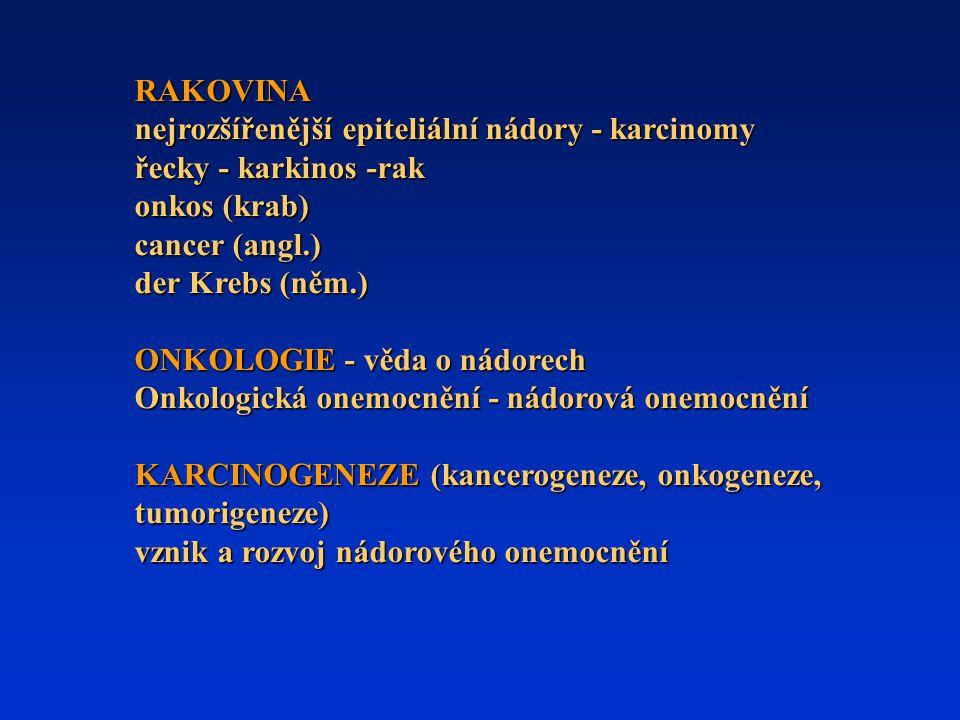 Karcinogeneze však znamená víc než jen mutagenezi Kromě genových a chromozomálních mutací zahrnuje i negenetické (epigenetické) změny.