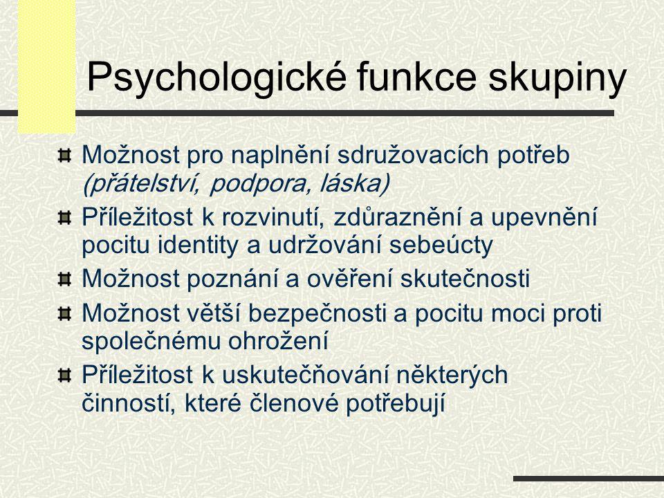Psychologické funkce skupiny Možnost pro naplnění sdružovacích potřeb (přátelství, podpora, láska) Příležitost k rozvinutí, zdůraznění a upevnění poci