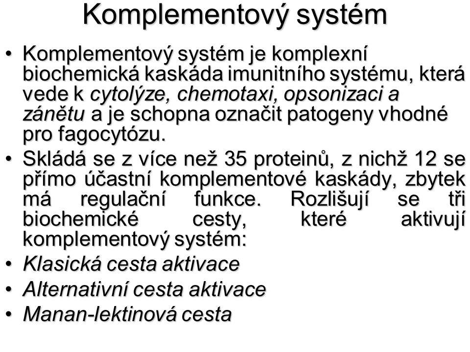 Komplementový systém Komplementový systém je komplexní biochemická kaskáda imunitního systému, která vede k cytolýze, chemotaxi, opsonizaci a zánětu a
