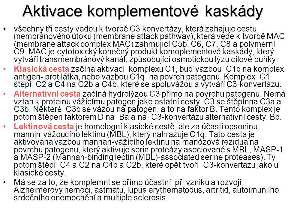 Aktivace komplementové kaskády všechny tři cesty vedou k tvorbě C3 konvertázy, která zahajuje cestu membránového útoku (membrane attack pathway), která vede k tvorbě MAC (membrane attack complex MAC) zahrnující C5b, C6, C7, C8 a polymerní C9.
