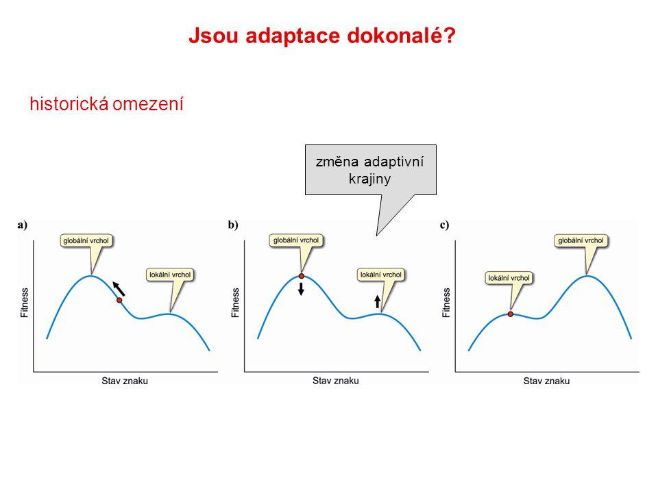 historická omezení Jsou adaptace dokonalé? změna adaptivní krajiny
