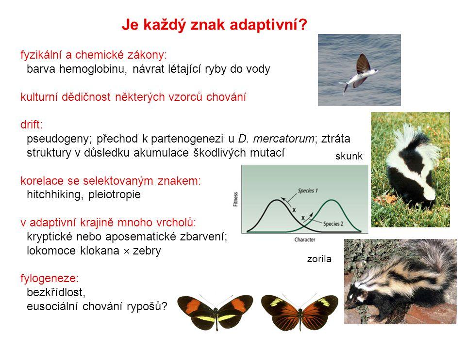 Je každý znak adaptivní? fyzikální a chemické zákony: barva hemoglobinu, návrat létající ryby do vody kulturní dědičnost některých vzorců chování drif