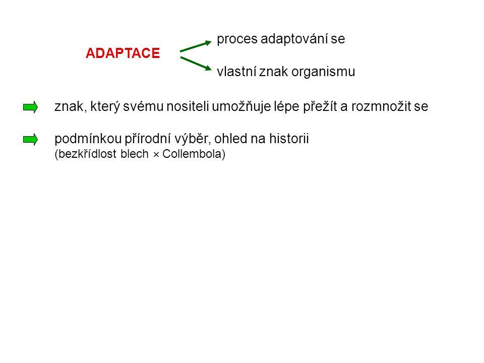 ADAPTACE proces adaptování se vlastní znak organismu znak, který svému nositeli umožňuje lépe přežít a rozmnožit se podmínkou přírodní výběr, ohled na