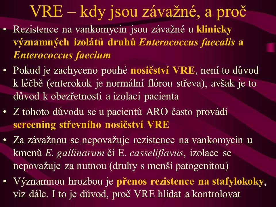 VRE v Brně Na MÚ LF MU a FN USA Brno byly dosud zaznamenány pouze ojedinělé případy VRE Naproti tomu na OKM FN Brno-Bohunice jsou nálezy VRE podstatně častější Pravděpodobným důvodem je spektrum pacientů.