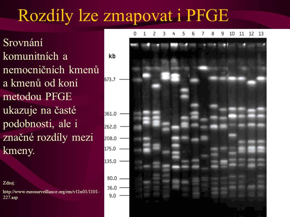 Genom jednoho z kmenů MRSA www.sanger.ac.uk/Info/Press/2004/ 040624.shtml gen mec, podmiňující rezistenci