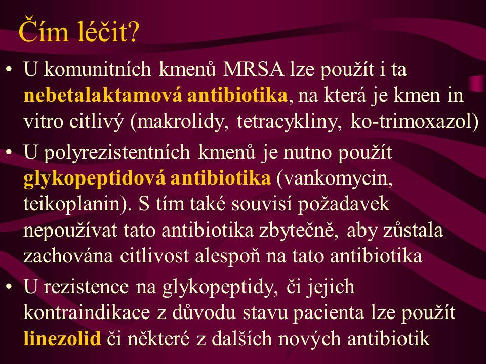 Nová antibiotika Streptograminová kombinace quinupristin/daflopristin (Synercid) Lipopeptid daptomycin Nové glykopeptidy – oritavancin, dalbavancin Glykolipodepsipeptid – ramoplanin U glykopeptidů a jim příbuzných látek lze ale očekávat vývoj rezistence i v souvislosti s užíváním stávajících glykopeptidů