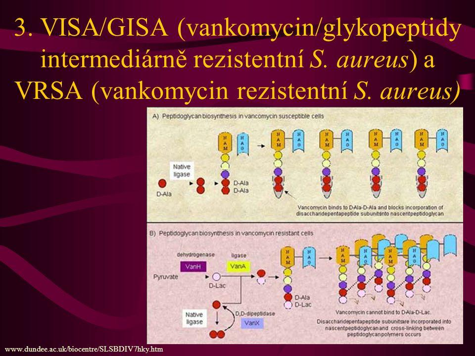 Od MRSA k VRE a VRSA www.ndt-educational.org/goldsmithslide.asp