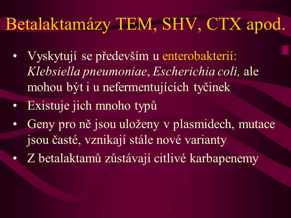 Metalobetalaktamázy Vyskytují se u G- nefermentujících bakterií, zejména pseudomonád Štěpí i karbapenemy Zbývají citlivé monobaktamy (aztreonam) Málokdy u enterobakterií
